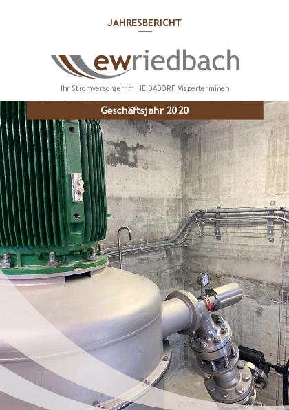 Geschaeftsbericht 2020 A5 web